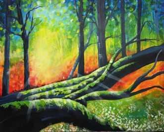 Forårs skoven