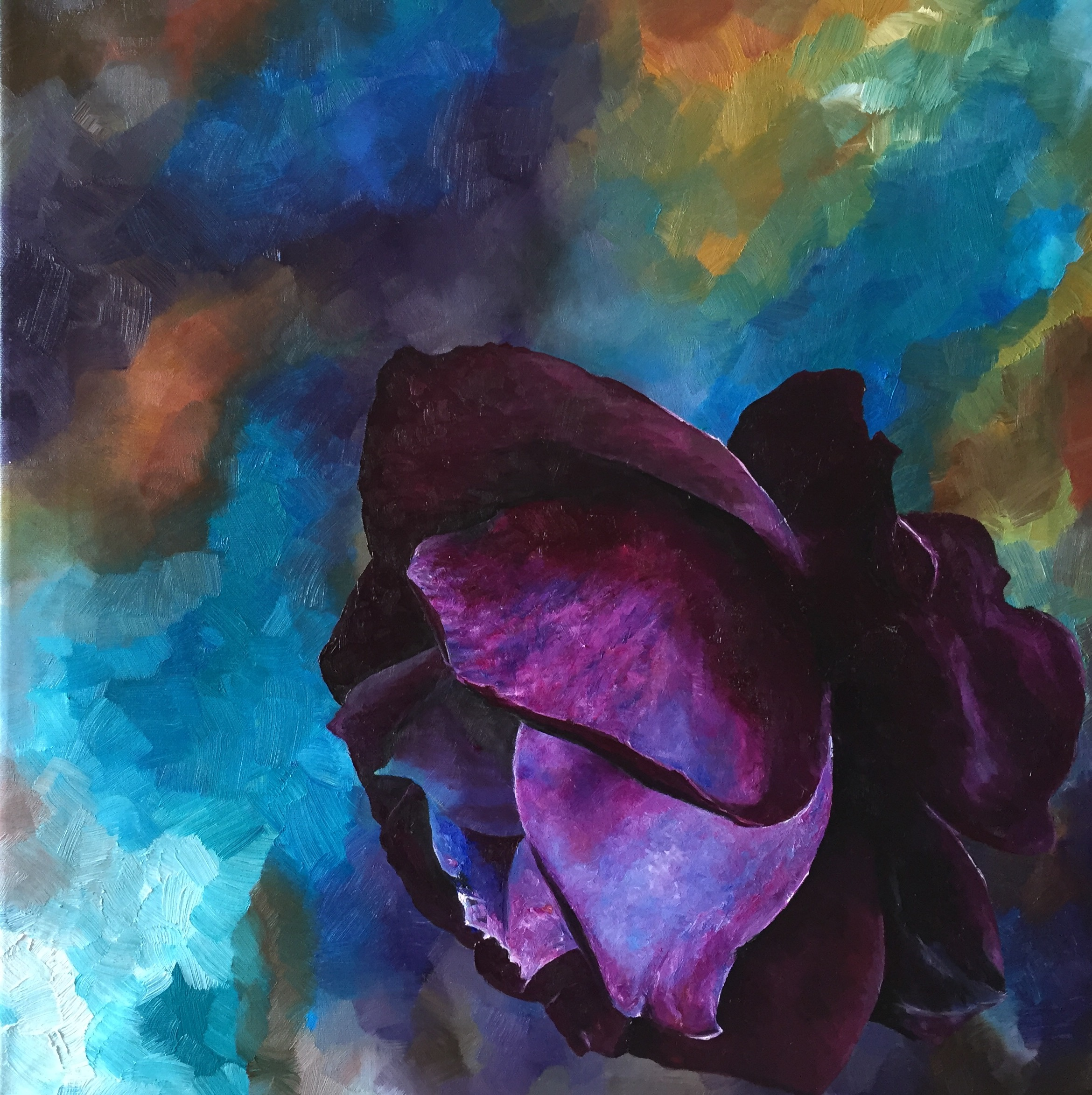Purple Rose | Leila Holberg