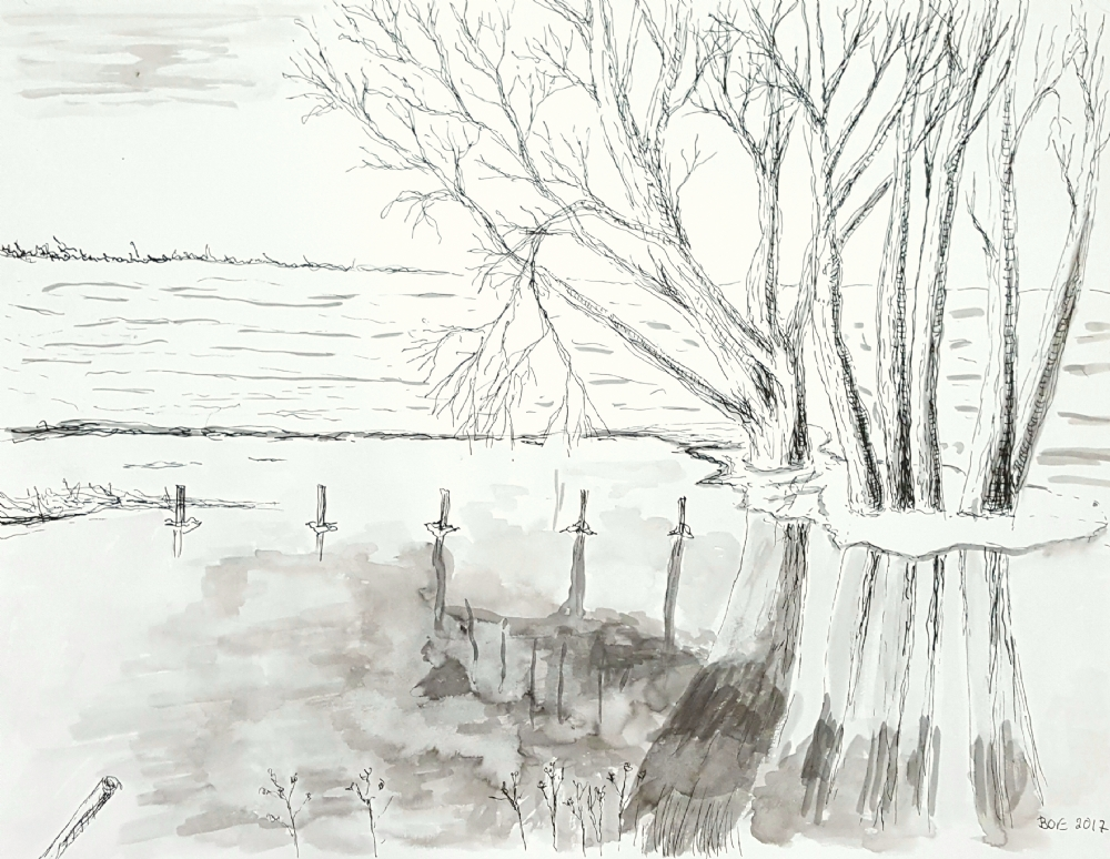 Motiv fra Tuse Næs | Tegning
