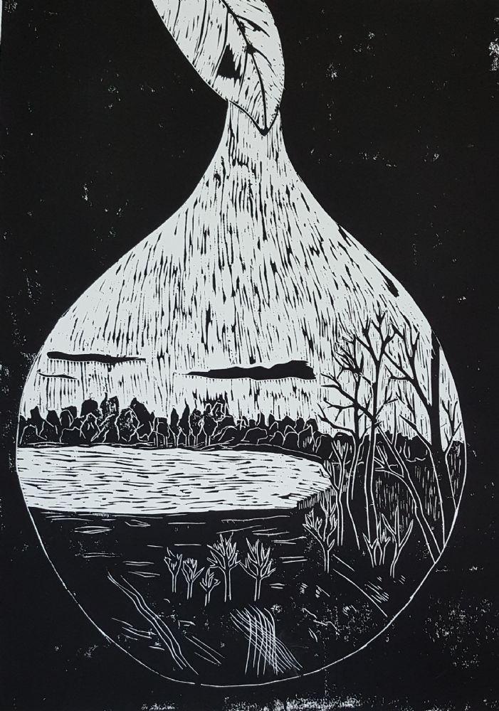 Vanddråben | Grafik