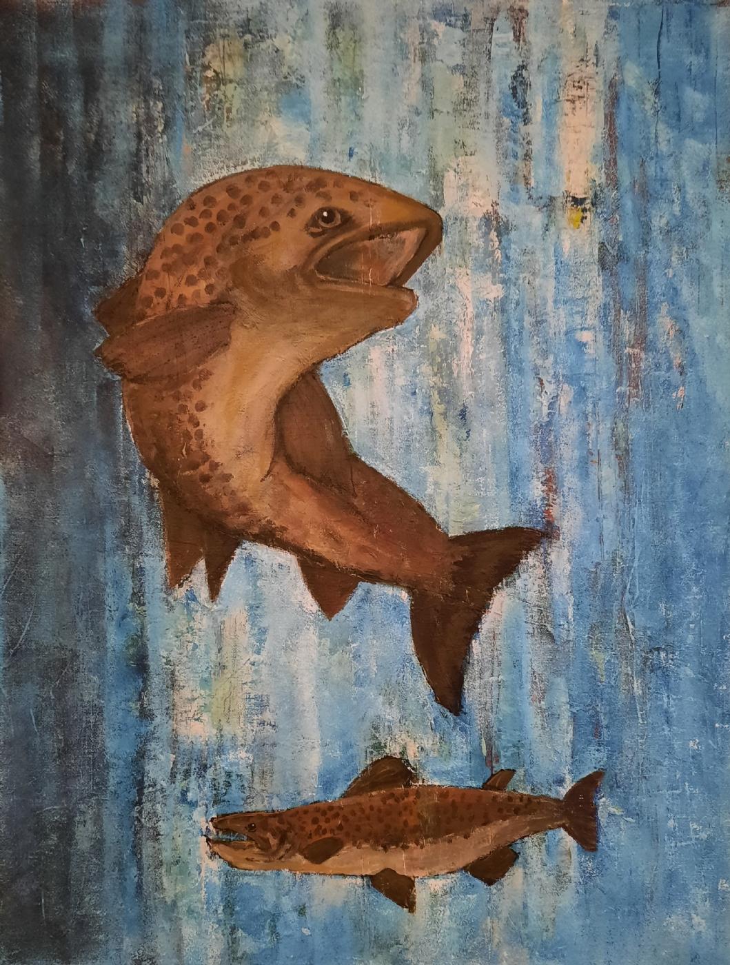 Fisk | Tegning