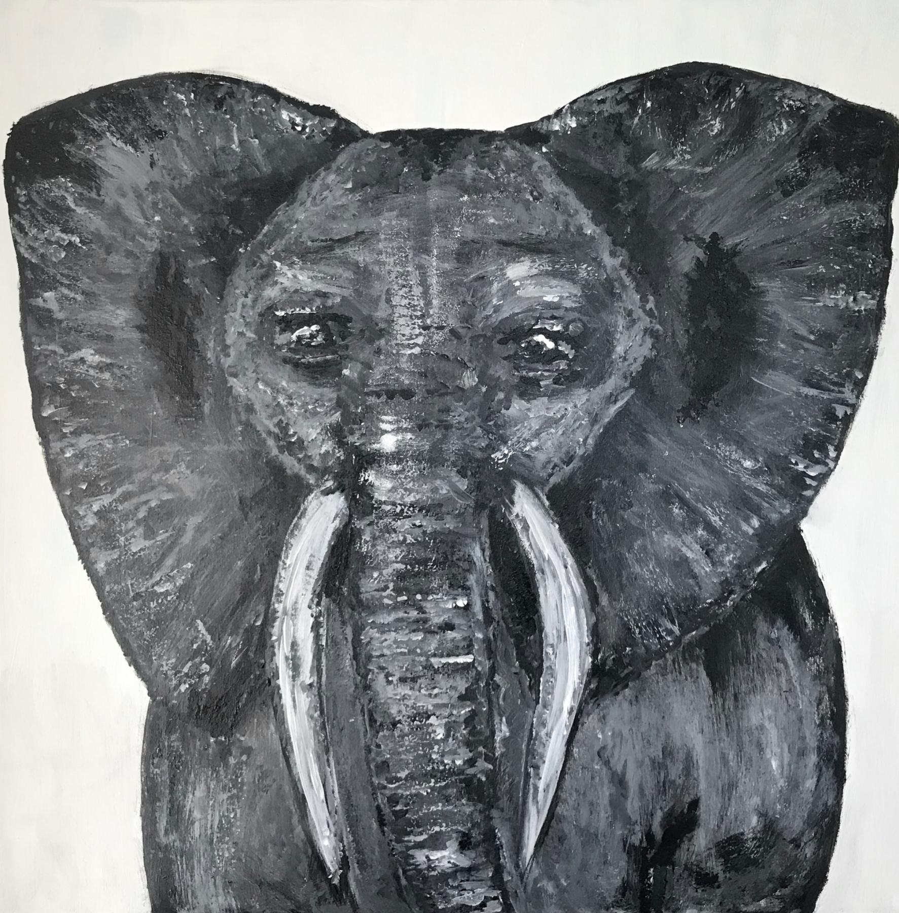 Corona Elephantus | Maleri